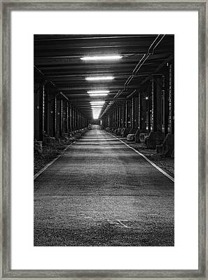 The Way Is Lit Framed Print