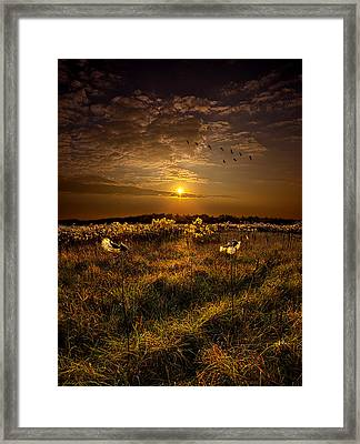 The Way South Framed Print