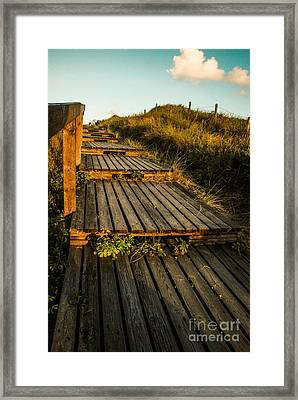 The Way To The Sea Framed Print by Hannes Cmarits