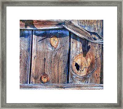The Weathered Abstract From A Barn Door Framed Print