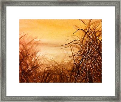 The Web At Dawn Framed Print by Karen  Condron