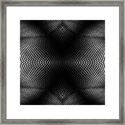 The Web Framed Print by Steve K