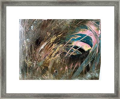 The Weeds Framed Print