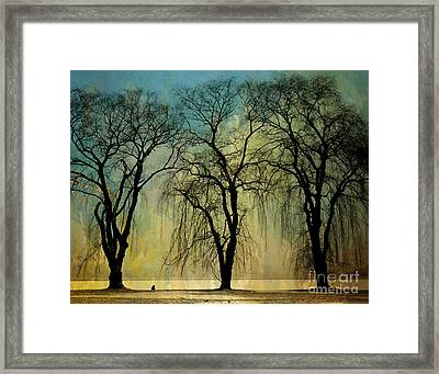 The Weeping Trees Framed Print by Bedros Awak