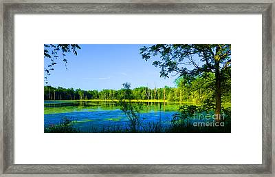 The Wetlands At Potato Creek Framed Print