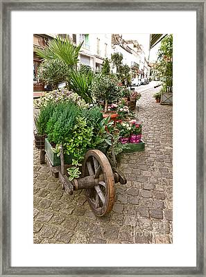 The Wheelbarrow At The Flower Shop Framed Print by Olivier Le Queinec