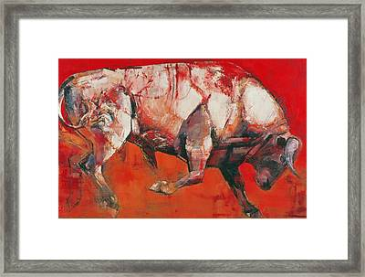 The White Bull Framed Print by Mark Adlington