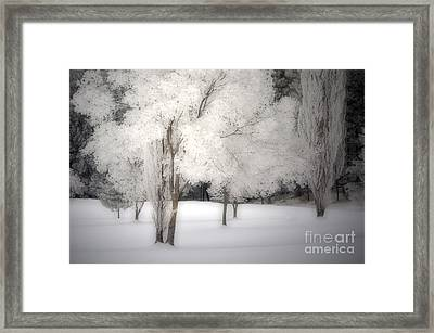 The White Dreams Of Winter Framed Print by Tara Turner
