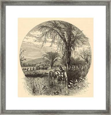 The White Mountains From The Conway Meadows 1872 Engraving Framed Print by Antique Engravings