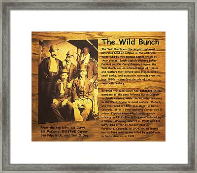 The Wild Bunch Framed Print by Camillus S Fly