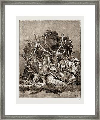 The Wild Game Of America, 1876 Framed Print