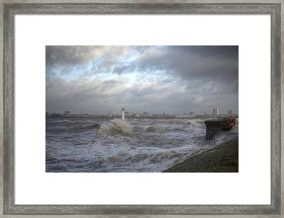 The Wild Mersey 2 Framed Print