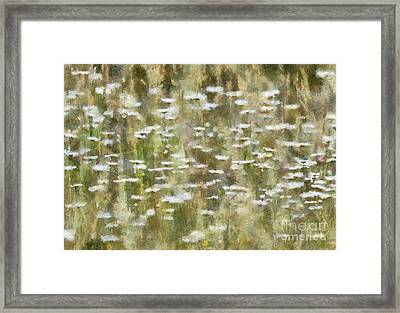 The Wild Ones  Framed Print