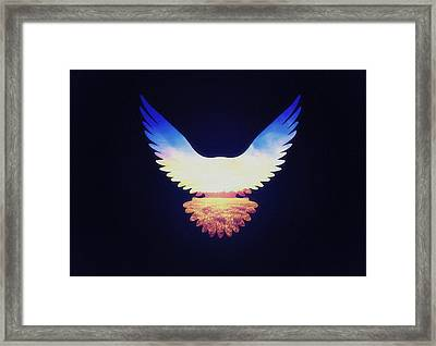 The Wild Wings Framed Print by Philipp Rietz