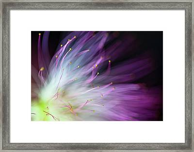 The Will-o-the-wisp Framed Print