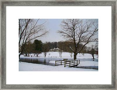 The Willows  Skunk Hollow Park Framed Print