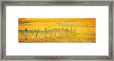 The Winding Road The Crooked Fence And The Bluebird Framed Print by Theresa Tahara