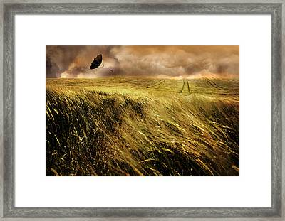 The Windy Day Framed Print by Mal Bray