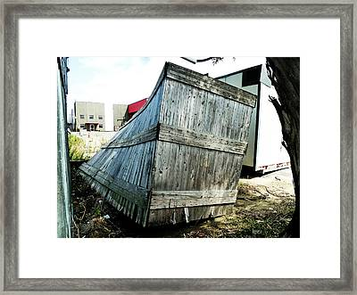 The Winner In The Leaning Contest Framed Print by Steve Taylor