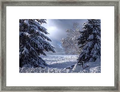 The Winter Pathway Framed Print