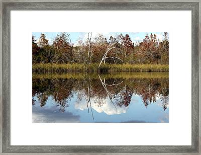 The Winter Tree Framed Print by Debra Forand