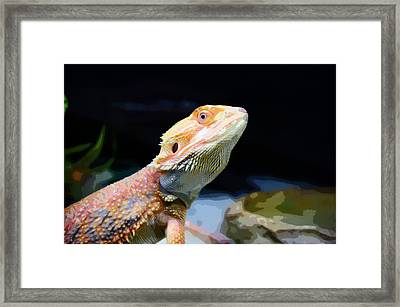 The Wise Lizard Framed Print by Celestial Images