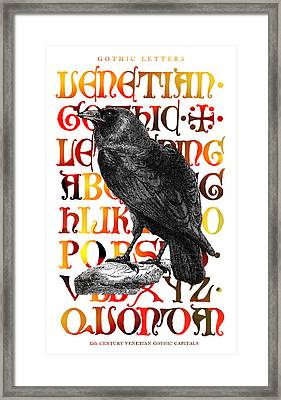 The Wise Raven Framed Print