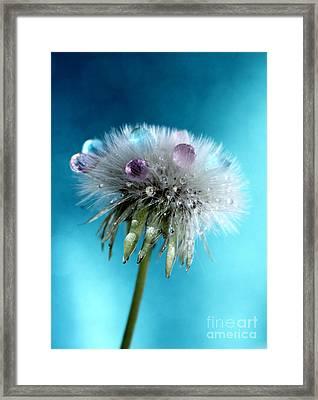 The Wish Framed Print by Krissy Katsimbras