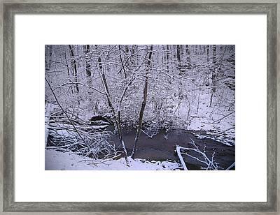 The Wishing Pool Framed Print