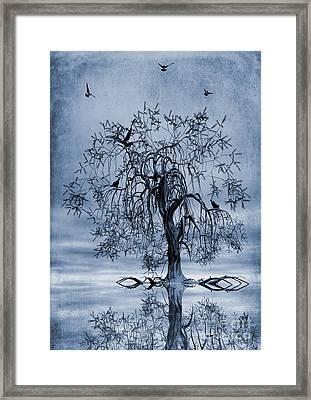 The Wishing Tree Cyanotype Framed Print by John Edwards