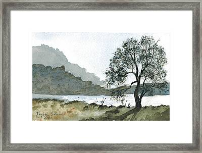 The Wishing Tree Framed Print by Janice Sobien
