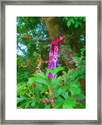 The Wishing Tree Framed Print by Kandy Hurley