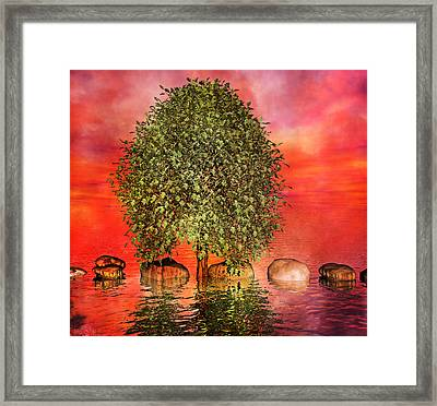 The Wishing Tree One Of Two Framed Print by Betsy C Knapp