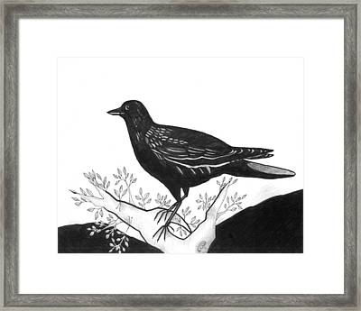 The Witness Framed Print by Helena Tiainen