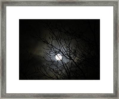 The Wizards Light Framed Print by Rosita Larsson