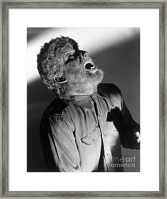 The Wolf Man - Lon Chaney Jr Framed Print by MMG Archives