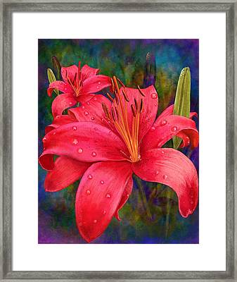 The Wonders Of June Framed Print