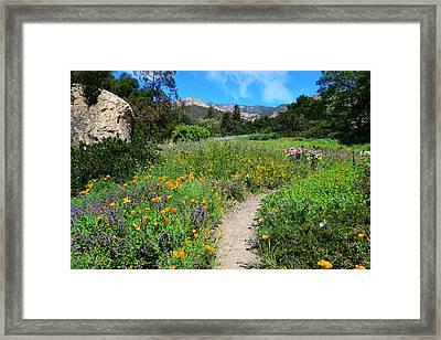 The Wonders Of Spring Framed Print