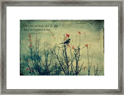 The Woods... Framed Print