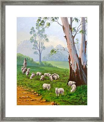 The Wool Road Framed Print by Anne Gardner