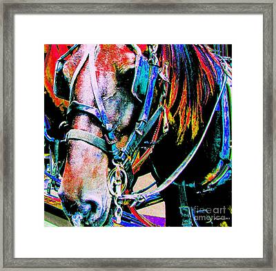 The Working Horse Framed Print by Annie Zeno