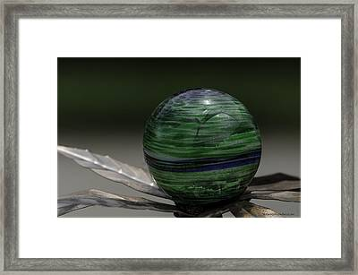 The World In Your Yard Framed Print by LeeAnn McLaneGoetz McLaneGoetzStudioLLCcom