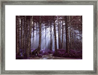 The World Is Waiting Framed Print by Harmony Lawrence