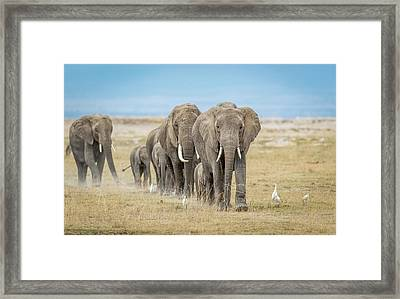 The World's Greatest Parade. Framed Print