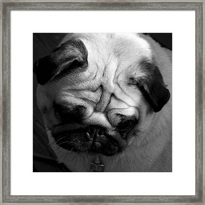 The Worrier Framed Print