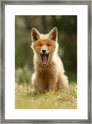 The Yawning Fox Kit Framed Print by Roeselien Raimond
