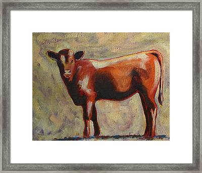 The Yearling Calf Framed Print