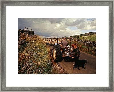 The Yorkshire Shepherd Framed Print by John Topman