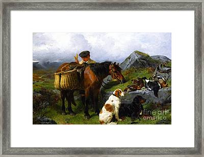 The Young Gamekeeper Framed Print by Celestial Images