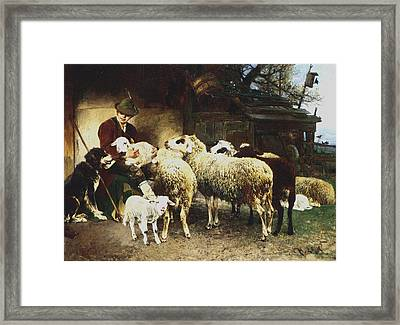 The Young Shepherd Framed Print by Heirich von Zugel